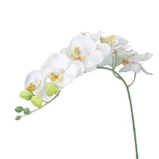 Planta de orquidea de simulacion – SODIAL(R) 1 pieza Decoracion de casa Planta de simulacion Flor orquidea mariposa artificial – Blanco