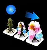 Tour de Magie - Arbre Magique - Magic Tree