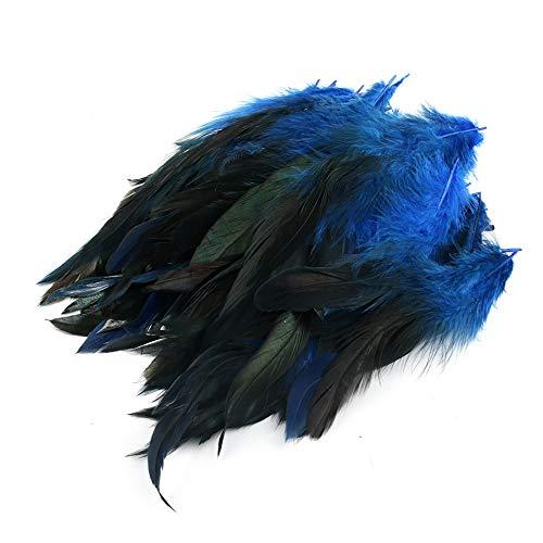 Crazy-m Echte Hahnenfedern Natur Dekoration Hahnfeder fasan Feder Hahn Federn Schwanzfedern 100 stück 4-8cm läng Ideal für DIY Basteln Federn, Kostüme, Hüte, basteln, Zuhause Dekor, Grün (Blue)