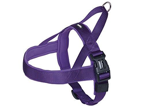 nobby-classic-preno-norvegese-harness-50-64-cm-42-cm-25-35-mm-viola