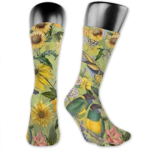Party Lady Cat Crazy Kostüm - MZZhuBao Tropical Flower Watercolor Bird Jungle Men's & Womens Athletic Full Crew Socks Running Gym Compression Foot