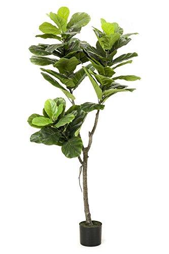 artplants Set 2 x Künstlicher Geigenficus FUSARI, 60 grüne Blätter, 150 cm - Zimmer Bäume/Deko Pflanze