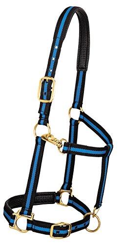 Weaver Leder Verstellbare gepolsterte Nylon Pferd Halfter, blau / schwarz, 1