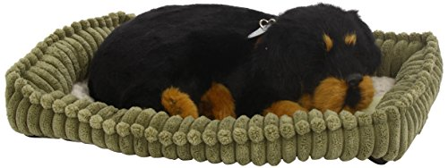 Perfect Petzzz 4916 - Perro de Peluche, diseño de Rottweiler