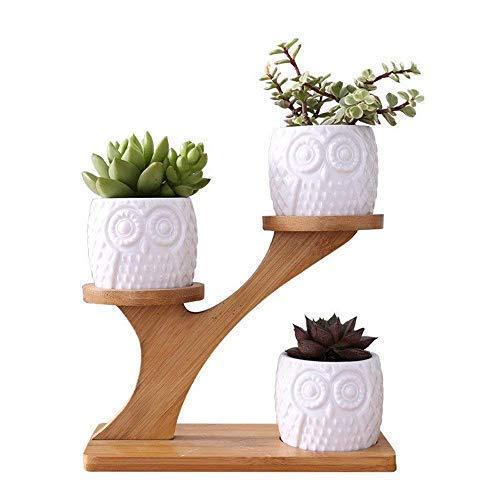 Deepclubs 1set gufo in ceramica vasi da giardino moderno decorativo cameretta succulente piante vasi da fiori fioriere 3bonsai con mensola a ripiani in bambù