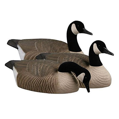 greenhead-gear-canada-goose-shells-70005-by-greenhead-gear