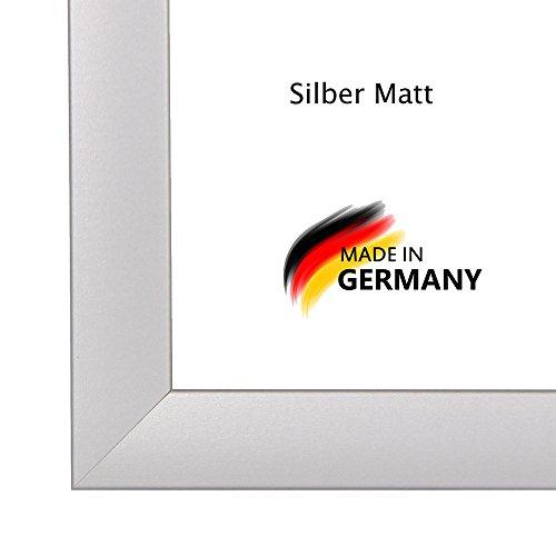 Bilderrahmen PN35 18x26 oder 26x18 cm in SILBER MATT normal Kunstglas und Rückwand, 35 mm breite MDF-Leiste mit Dekor Folienummantelung (18-poster Apollo)