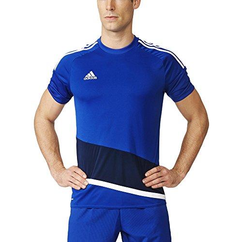 adidas Herren T-Shirt Regi 16 Jsy Trikot Bold Blue/White/Dark Blue