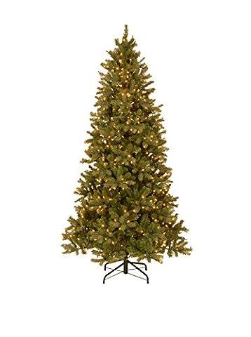National Tree (PEDD1-323-75)