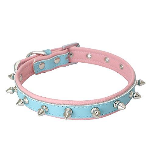 CAOQAO Spitzen Nieten Durable Lederhalsband für Katze, Kätzchen, Welpe, Kleiner Hund - Grundlegende verstellbare Halsketten - 11 Farben 4 Größe -
