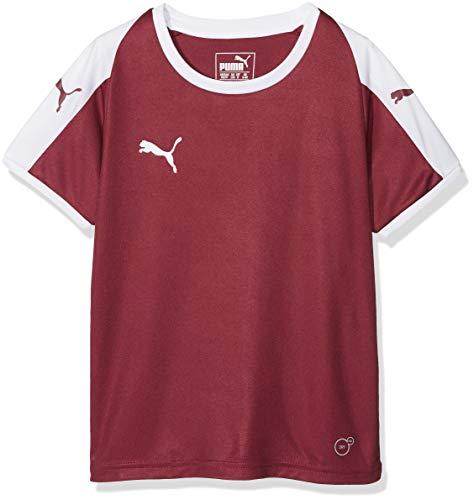 Puma Kinder Liga Jersey Jr T-Shirt, Cordovan White, 152