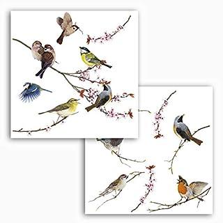 Komar - Window-Sticker BIRDS - 31 x 31 cm - Fensterdeko, Fenstersticker, Fensterfolie, Vogel, Blaumeise, Vintage - 16003, Bunt