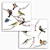 Komar - Window-Sticker BIRDS - 31 x 31 cm - Fensterdeko, Fenstersticker, Fensterfolie, Vogel, Blaumeise, Vintage - 16003