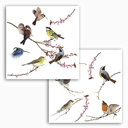 fenstersticker blumen Komar - Window-Sticker BIRDS - 31 x 31 cm - Fensterdeko, Fenstersticker, Fensterfolie, Vogel, Blaumeise, Vintage - 16003