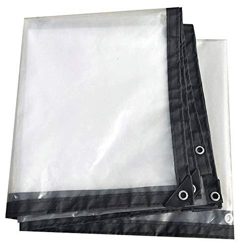 WCS Bordatura Ispessita Trasparente Forato Impermeabile e Impermeabile Foglio di plastica Balcone Balcone Raccolto Serra Film (Size : 4x8m)