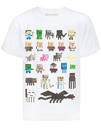 Minecraft Vanilla Underground Sprites Boys White T-Shirt (12-13 Years)