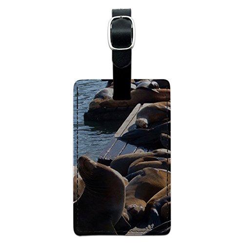 San Francisco Seal Löwen–Pier 39Fisherman 's Wharf Leder Gepäck ID Tag