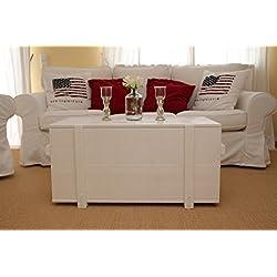 Caja de madera baúl mesa de café mesa auxiliar vintage estilo Shabby Chic madera maciza blanco