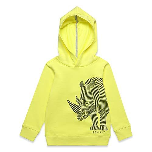 ESPRIT KIDS Jungen Sweatshirt, Gelb (Lemon Drop 710), (Herstellergröße: 116+) -