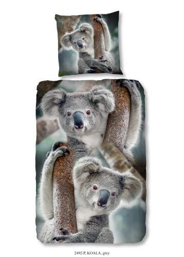 Good Morning Bettwäsche 2492 Koala Bär Motiv 135x200cm Baumwolle (Tier Zeug)