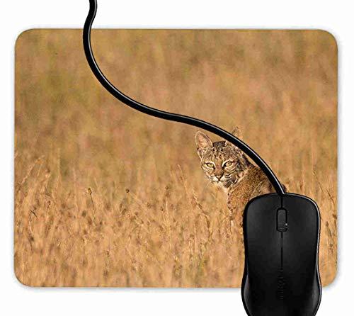 Mauspad Bobcat Lynx Rutschfeste Gummi Basis Mouse pad, Gaming mauspad für Laptop, Computer 1F991 - Bobcat Lynx