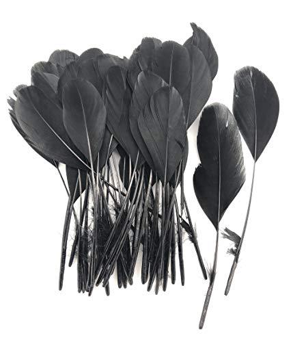 ERGEOB schwarz abgestreift Coque Schwanz Federn 10-15cm/4-6 Zoll Länge Basteln Material Kopfschmuck Brosche Material schwarz