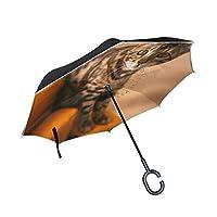 LKZNT Pretty Bengal Cat Reverse Umbrella with C-Shape Handle Car Inverted Windproof Rain Umbrella Outdoor Travel Umbrella
