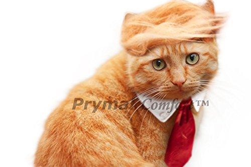Prymal Comfort Trump Katzen-Kostüm und Krawatte für Halloween, Partys und Bilder