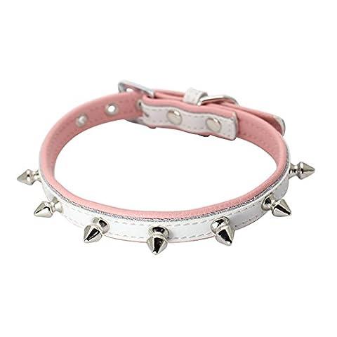 Dogs Kingdom einer Zeile mit Spike-Nieten Hundehalsband Hundehalsband Echt Leder Halsband Weiches Echtes Leder, gepolstert, Puppy Small Medium (Brass Bell Hardware)