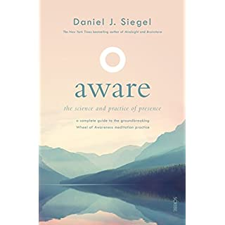 Aware: the science and practice of presence ― a complete guide to the groundbreaking Wheel of Awareness meditation practice