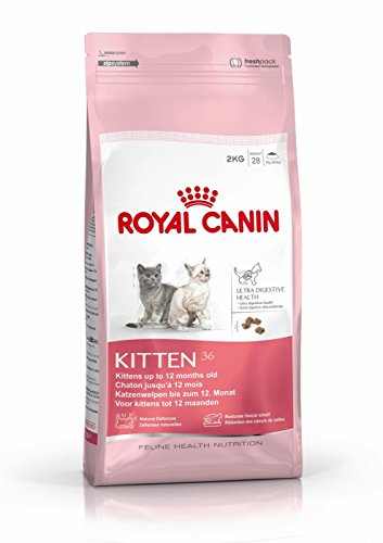 Royal-Canin-Kitten-Food-36-Dry-Mix