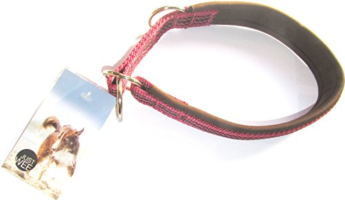 Just Wee Neoprenpolster Hundehalsband Schlupfhalsband mit Zugstop (38-48 cm, BROBEER/BRAUN)