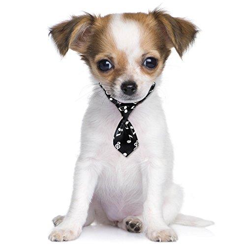Musik Noten schwarz weiß Fancy Kleid süsse Haustier Hund Katze Mini Hals (Fancy Dress Kostüme Musik)