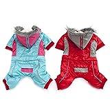 Zebuakuade Manteau en Coton à Capuche Colorblock Vêtements pour Animaux domestiques Vêtements pour Animaux domestiques Vêtements d'hiver Chien Manteau en Coton Chaud à Quatre Pieds