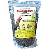 Tirupati Agro Seeds Premium Quality Sun Flower Seeds for Bird Food (900 GMS)