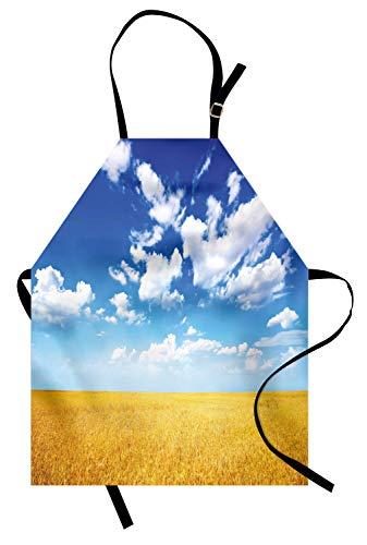 Abakuhaus agriturismo grembuıle da cucına, campo di grano estate, lavabile altezza regolabile colori chiari senza sbiaditi, terra giallo blu bianco