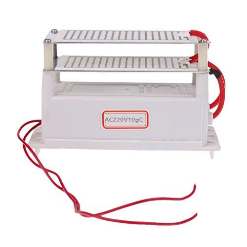 Gazechimp Generador de Ozono de 220V 10G Dual Placa Purificador de Aire...