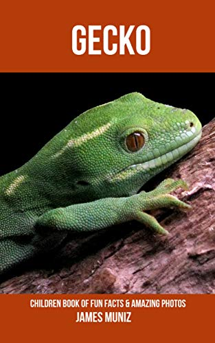 Epub Gratis Gecko: Children Book of Fun Facts & Amazing Photos