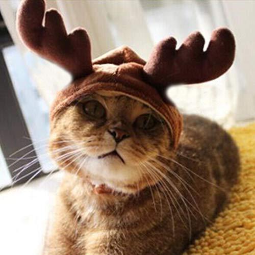 Kostüm Kopie Katze - Yongse Weihnachtskostüm Haustier Katzen Hündchen Geweih Kappe Haustier Kleidung