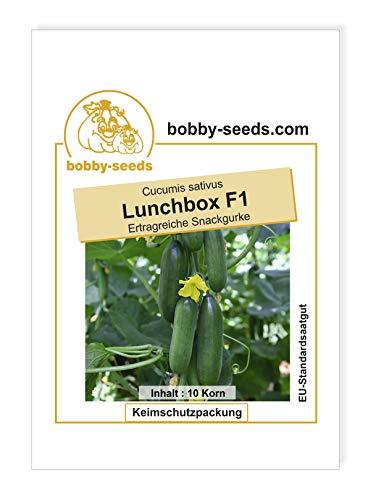 Lunchbox F1 Snackgurkensamen von bobby-seeds Portion