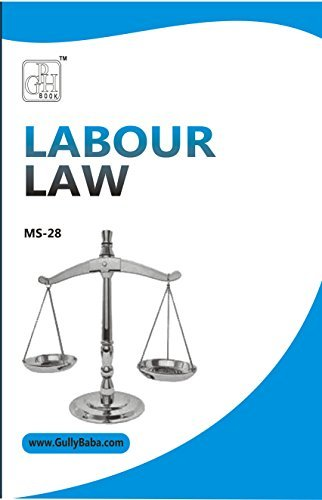 MS-28 Labour Law