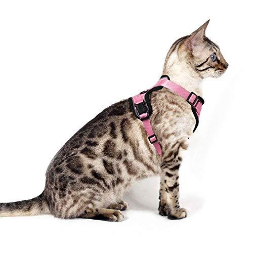 Eagloo Geschirr für Katzen Katzengeschirr Kleine Katze Katzengarnitur Ausbruchsicher Welpengeschirr Soft Kaninchengarnitur Katzenweste Verstellbar Schutz Kitten Hunde Chihuahua Cat Harness Rosa S