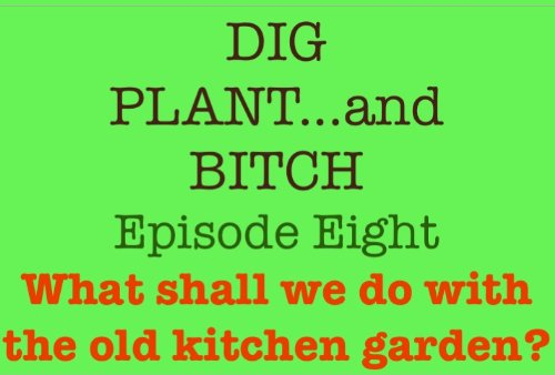 what-shall-we-do-with-the-old-kitchen-garden-dig-plant-and-bitch-the-soap-opera-for-gardeners-book-8