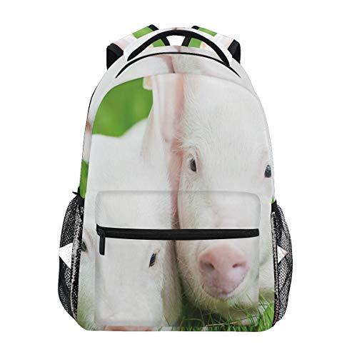 zaini dislonly zaino per college scuola outdoor sport,un porcellino di due giovani bambini sull'agricoltura di allevamento del granaio dell'animale da allevamento dell'erba verde