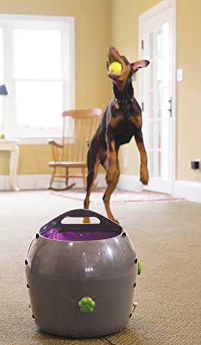 PetSafe Automatic Ball Launcher Dog Toy, Interactive Tennis Ball Throwing Machine for Dogs, Water Resistant 7