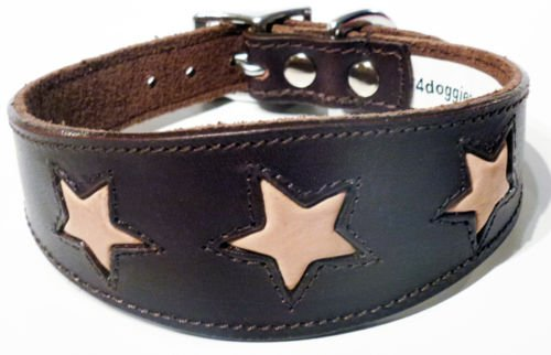 17-21 Inch Brown with Tan Stars Leather Whippet Greyhound Collar