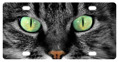 Cat Eyes Decorative Front Plate,Car Plate,Car Tag,License Plate Frame 6