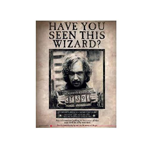 SD Toys - Poster en Verre Harry Potter - Hogwarts Express 60X20cm - 8435450200724