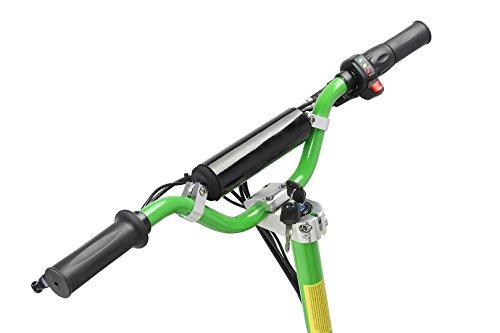 E-Scooter Roller Original E-Flux Vision mit 1000 Watt 36 V Motor Elektroroller E-Roller E-Scooter in vielen Farbe (Grün) - 6