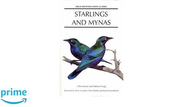 About Munias and Mannikins